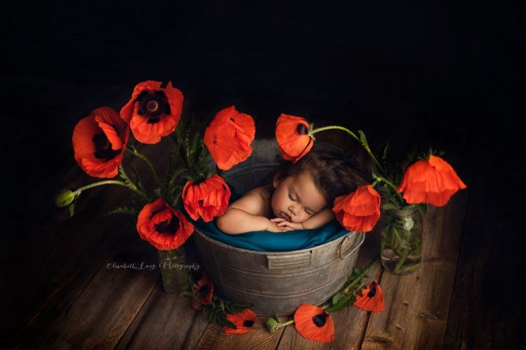 Sleeping in the poppies.